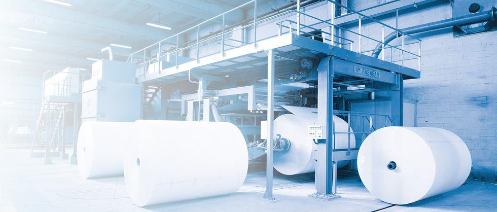 Taglierina simplex con sistemi ottici per l'eliminazione automatica di impurità e difetti